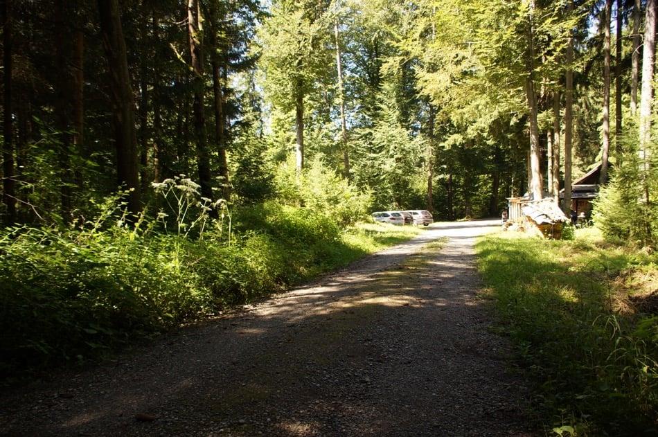 Anfahrt zur Waldhütte Volketswil