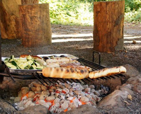 Waldhütte Volketswill mit Grillstelle